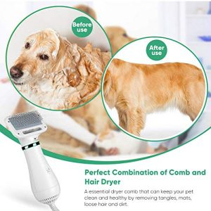 Youthink Pet Hair Dryer