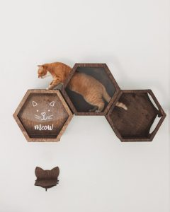 Cat Shelves by Cats Mode