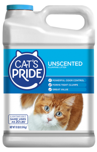 Kitten playing in the litter box: Use an unscented litter