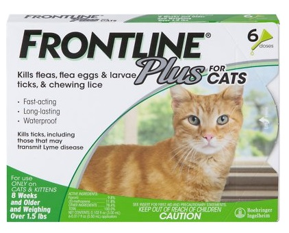 Frontline Cat Flea Treatment