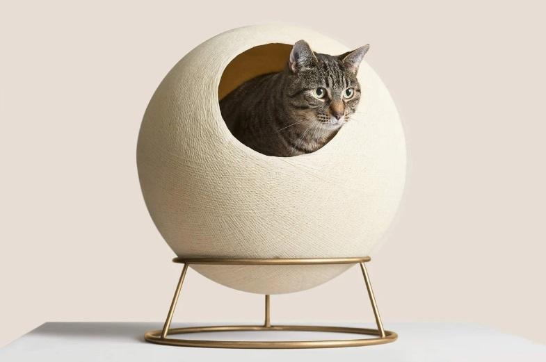 Stellar Cat Bed