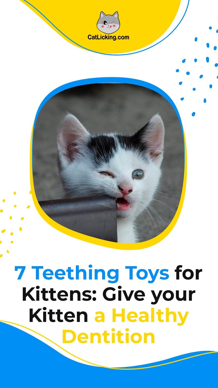 Teething Toys for Kittens