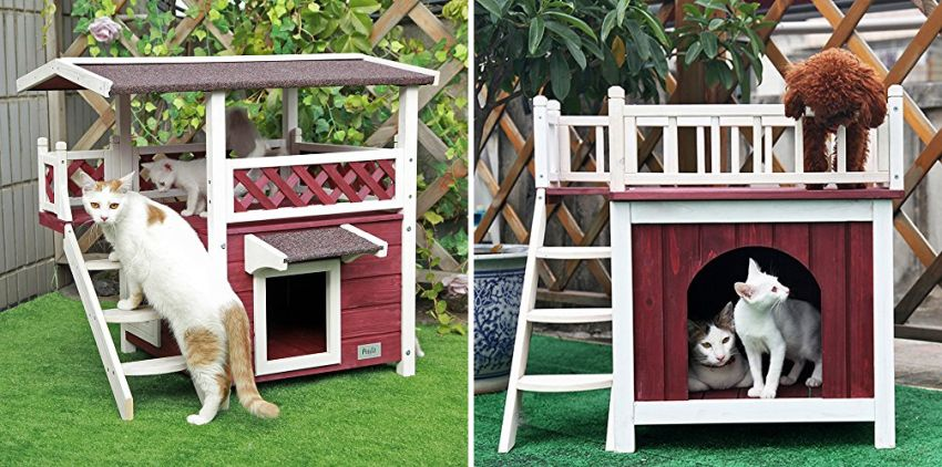 Outdoor Cat Houses: Petsfit Outdoor Cat House