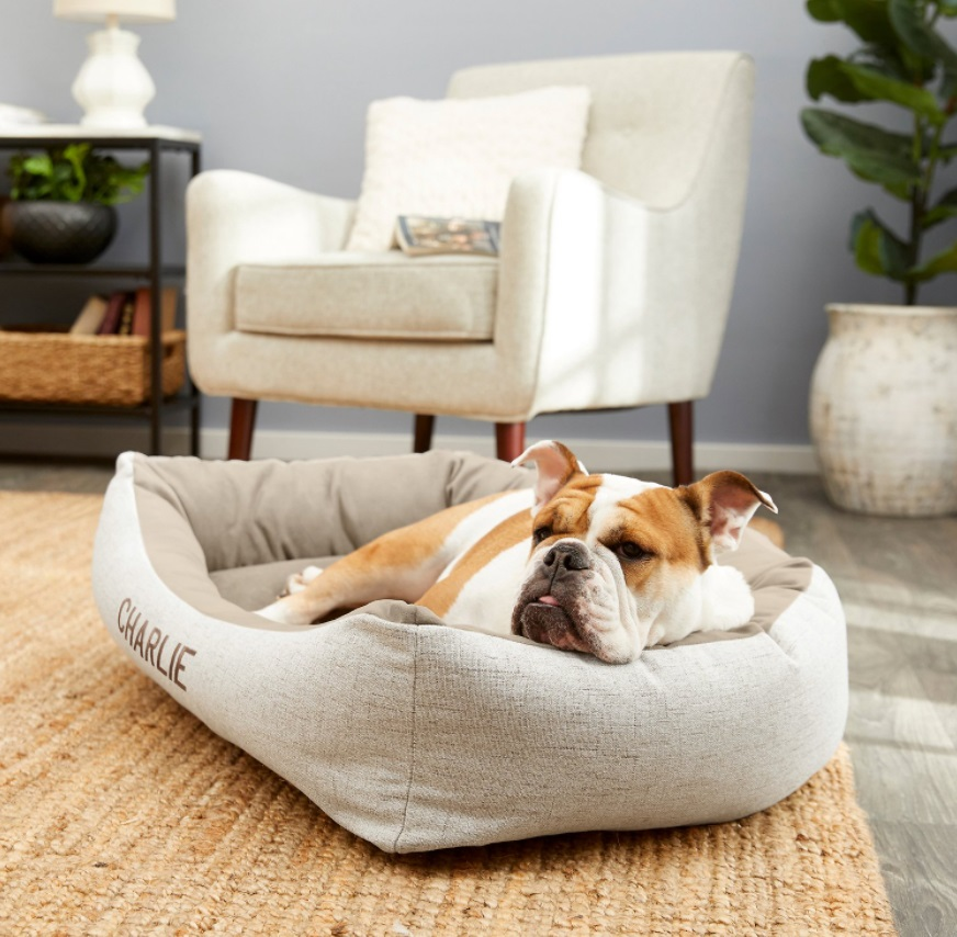 Frisco Personalized Rectangular Bolster Cat Bed